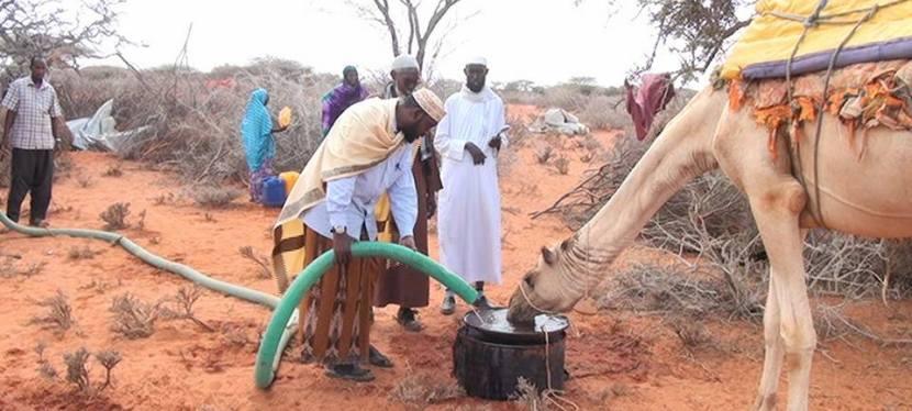 Von der Dürre zurRegenzeit